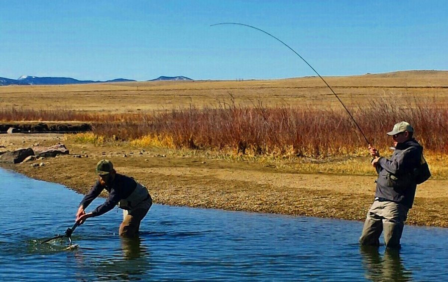 Fly fishing image gallery for the dream stream deckers for 11 mile canyon fishing